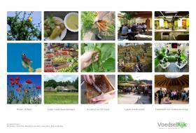 Voedselrijk, Matthijs van der Ham, stadslandbouw